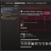 Что значит steam версия игры